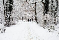 Coppie che camminano attraverso il legno nevoso Immagine Stock