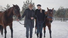 Coppie che camminano con i cavalli all'aperto su un ranch del paese nell'inverno Cavalli principali della donna e dell'uomo archivi video