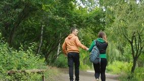 Coppie che camminano congiuntamente nel parco video d archivio