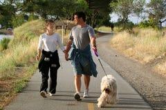 Coppie che camminano il loro cane Immagini Stock