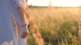 Coppie che camminano nel campo di erba stock footage