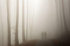 Coppie che camminano nella foresta nebbiosa Fotografie Stock Libere da Diritti