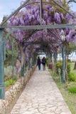 Coppie che camminano nella retrovisione del parco fotografia stock libera da diritti