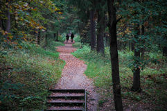 Coppie che camminano nella sosta di autunno Fotografia Stock