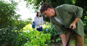Coppie che fanno il giardinaggio nel giardino archivi video