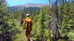 Coppie che fanno un'escursione nella montagna 4k archivi video