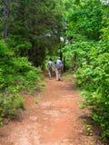 Coppie che fanno un'escursione vicino al canyon di provvidenza immagini stock libere da diritti