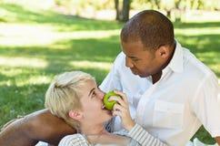 Coppie che flirtano con l'alimento nel parco Immagini Stock