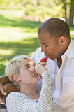 Coppie che flirtano con l'alimento nel parco Immagine Stock Libera da Diritti