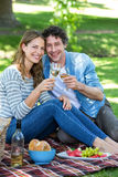 Coppie che hanno un picnic con vino Fotografia Stock Libera da Diritti
