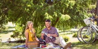 Coppie che hanno un picnic nel parco Fotografia Stock