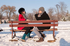 Coppie che si siedono sul banco nell'inverno Fotografia Stock