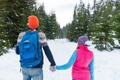 Coppie che si tengono per mano punto di vista di camminata di Forest Outdoor Winter Back Rear della neve Immagini Stock Libere da Diritti