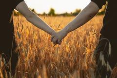 Coppie che si tengono per mano in un giacimento di grano immagini stock libere da diritti