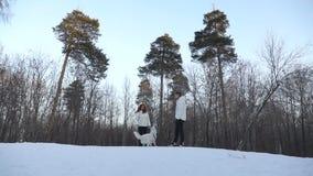 Coppie con il cane nella foresta di inverno archivi video