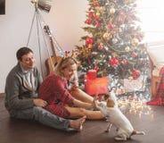Coppie con il cane vicino all'albero di Natale fotografia stock libera da diritti
