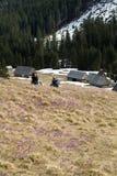 Coppie d'escursione felici che prendono una rottura sulla traccia di montagna Fotografia Stock