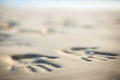 Coppie degli amanti ad un bello tramonto sopra l'oceano Coppie su una vacanza romantica Imprima le paia delle mani nella sabbia,  Fotografia Stock