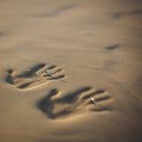 Coppie degli amanti ad un bello tramonto sopra l'oceano Coppie su una vacanza romantica Imprima le paia delle mani nella sabbia,  Immagine Stock