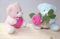 Coppie degli orsi di morbidezza nell'amore Immagine Stock