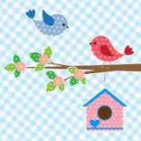 Coppie degli uccelli e del birdhouse Fotografia Stock Libera da Diritti