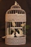 Coppie degli uccelli nell'amore in una gabbia annata Fotografie Stock Libere da Diritti