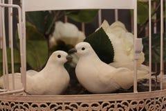 Coppie degli uccelli nella scheda di love annata Immagini Stock