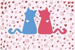 Coppie dei gatti sul San Valentino Fotografia Stock Libera da Diritti
