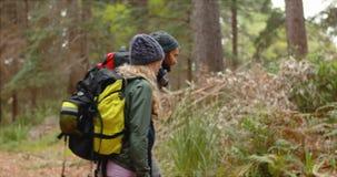 Coppie della viandante che fanno un'escursione nella foresta archivi video