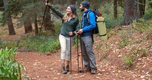 Coppie della viandante che fanno un'escursione nella foresta video d archivio