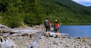 Coppie della viandante che fanno un'escursione vicino alla riva del fiume 4k archivi video