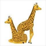 Coppie delle giraffe sveglie del fumetto Fotografia Stock