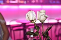 Coppie delle rose bianche in night-club Fotografie Stock