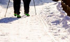 Coppie delle viandanti che camminano con i ramponi Fotografia Stock