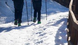 Coppie delle viandanti che camminano con i ramponi Immagini Stock Libere da Diritti