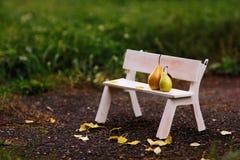 Coppie di amore che si siedono sul banco Immagine Stock