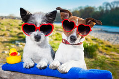 Coppie di amore sulla vacanza Fotografia Stock
