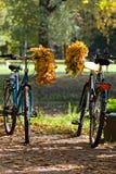 Coppie di caduta delle biciclette fotografia stock libera da diritti