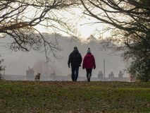 Coppie di camminata del cane sul terreno comunale nell'inverno, Hertfordshire di Chorleywood immagini stock libere da diritti