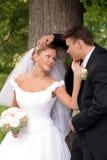 Coppie di cerimonia nuziale nel baciare di amore Immagini Stock