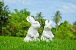 Coppie di coniglio bianco Immagine Stock Libera da Diritti