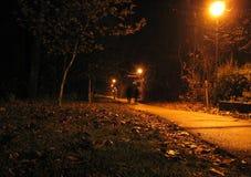 Coppie di notte Fotografie Stock Libere da Diritti