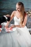 Coppie di nozze che celebrano le loro nozze Immagini Stock