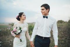 Coppie di nozze che guardano in collina della montagna sul tramonto Immagine Stock Libera da Diritti