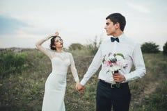 Coppie di nozze che guardano in collina della montagna sul tramonto Immagini Stock Libere da Diritti