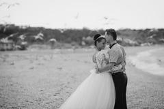 Coppie di nozze, sposa e sposo, camminanti sulla a Immagini Stock Libere da Diritti
