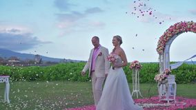 Coppie di nozze sposate appena alle Hawai E video d archivio