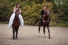 Coppie di nozze sui cavalli Immagine Stock Libera da Diritti