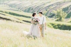 Coppie di nozze sulla natura sposa e sposo che abbracciano alle nozze Immagini Stock Libere da Diritti