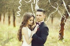 Coppie e nastri di nozze sull'albero immagini stock libere da diritti